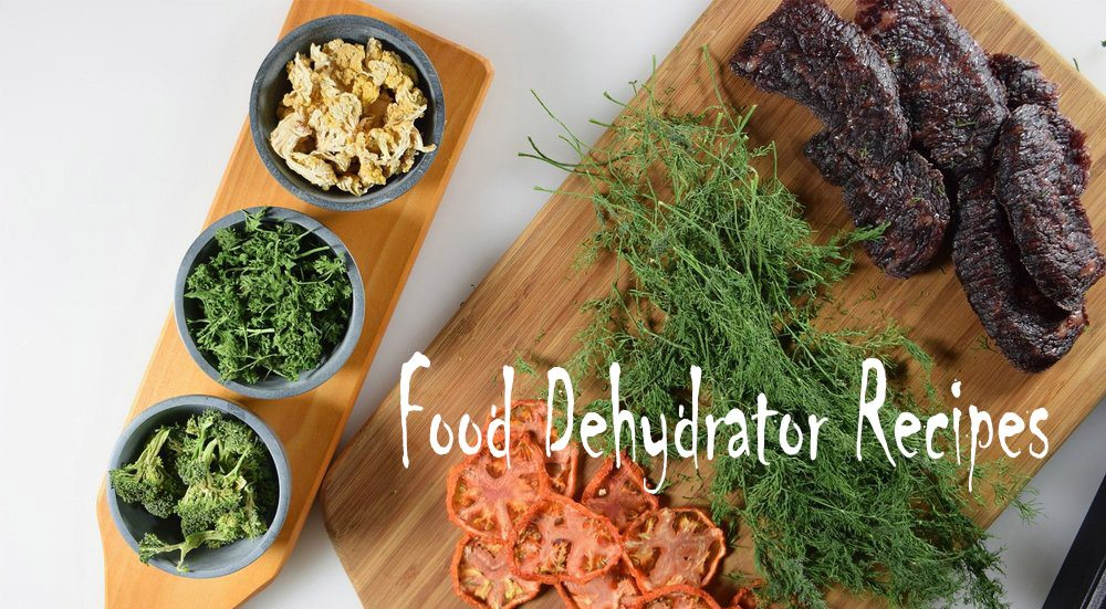 food dehydrator recipes
